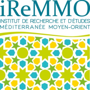 logo_iremmo_base line_hd_transparent